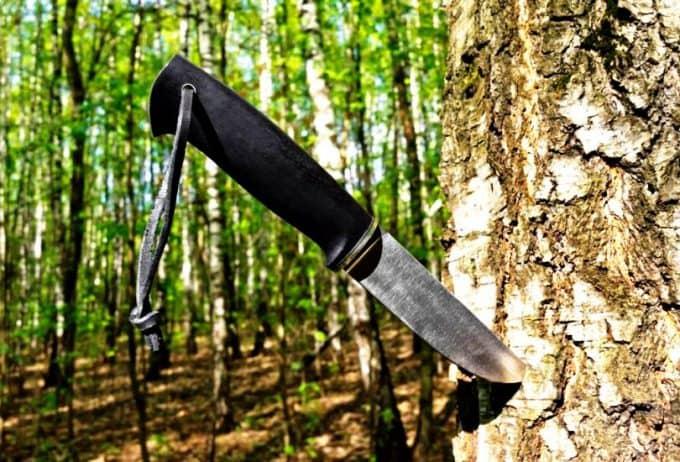 زنده ماندن در جنگل