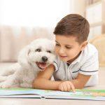 چگونه برای کودکان یک حیوان خانگی بخریم؟