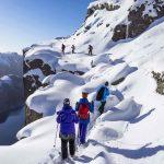 طبیعت گردی در زمستان