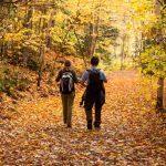 طبیعت گردی در پاییز